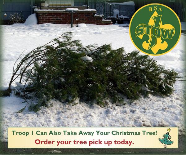 2015 tree pickups